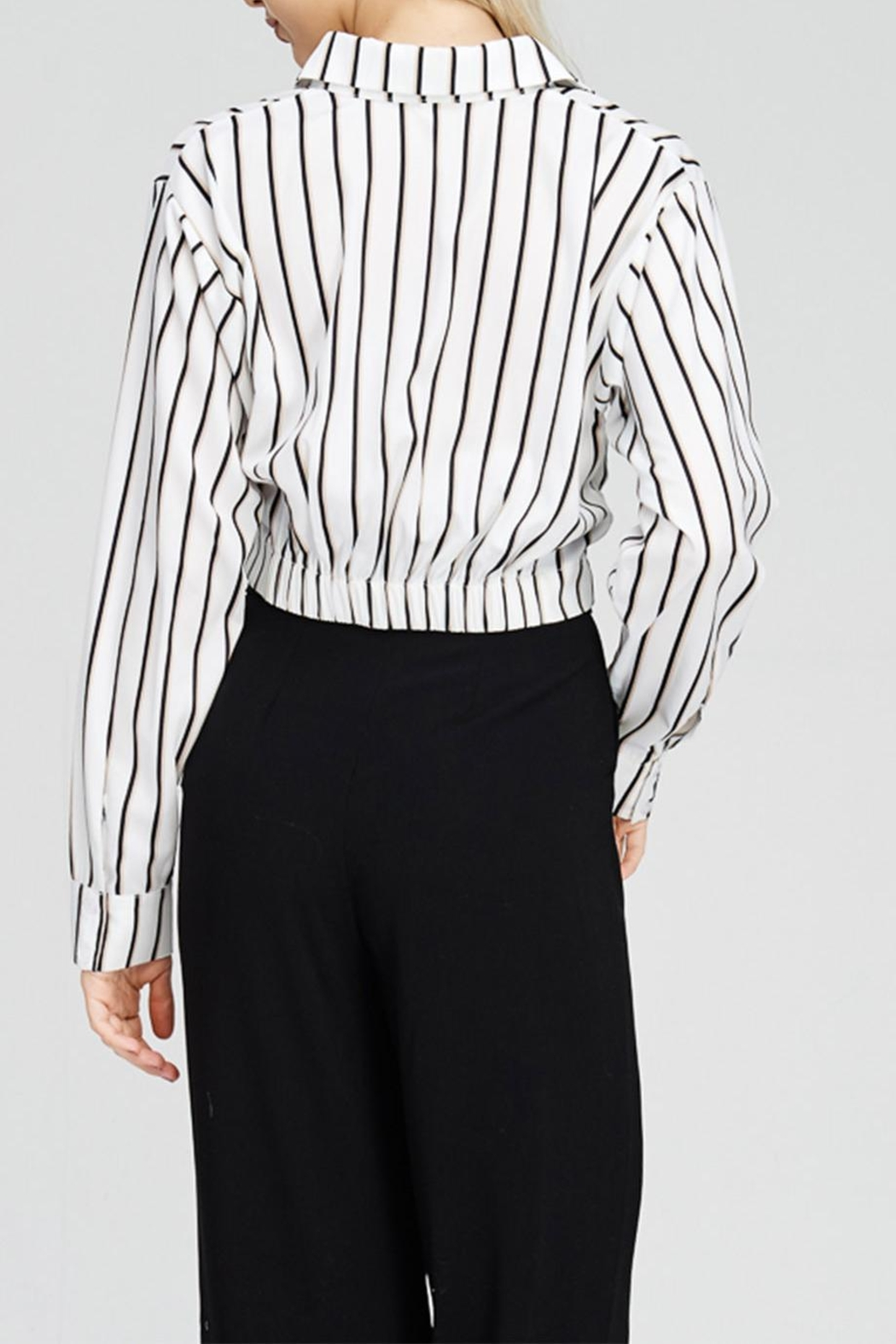 Emory Park Stripe Button Down - Front Full Image