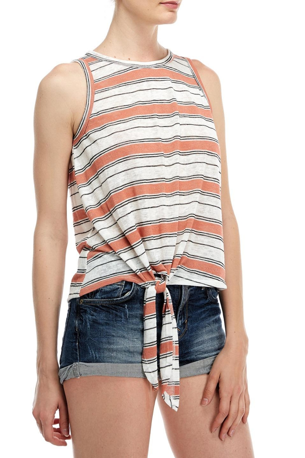 All In Favor Stripe Tank Top - Front Full Image