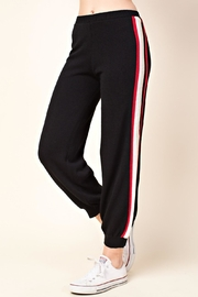 Honey Punch Stripe Track Pants - Side cropped