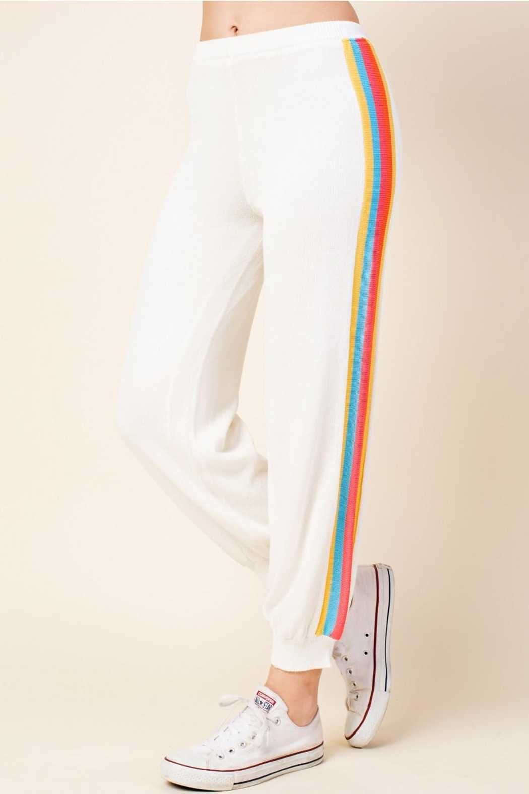 Honey Punch Stripe Track Pants - Back Cropped Image