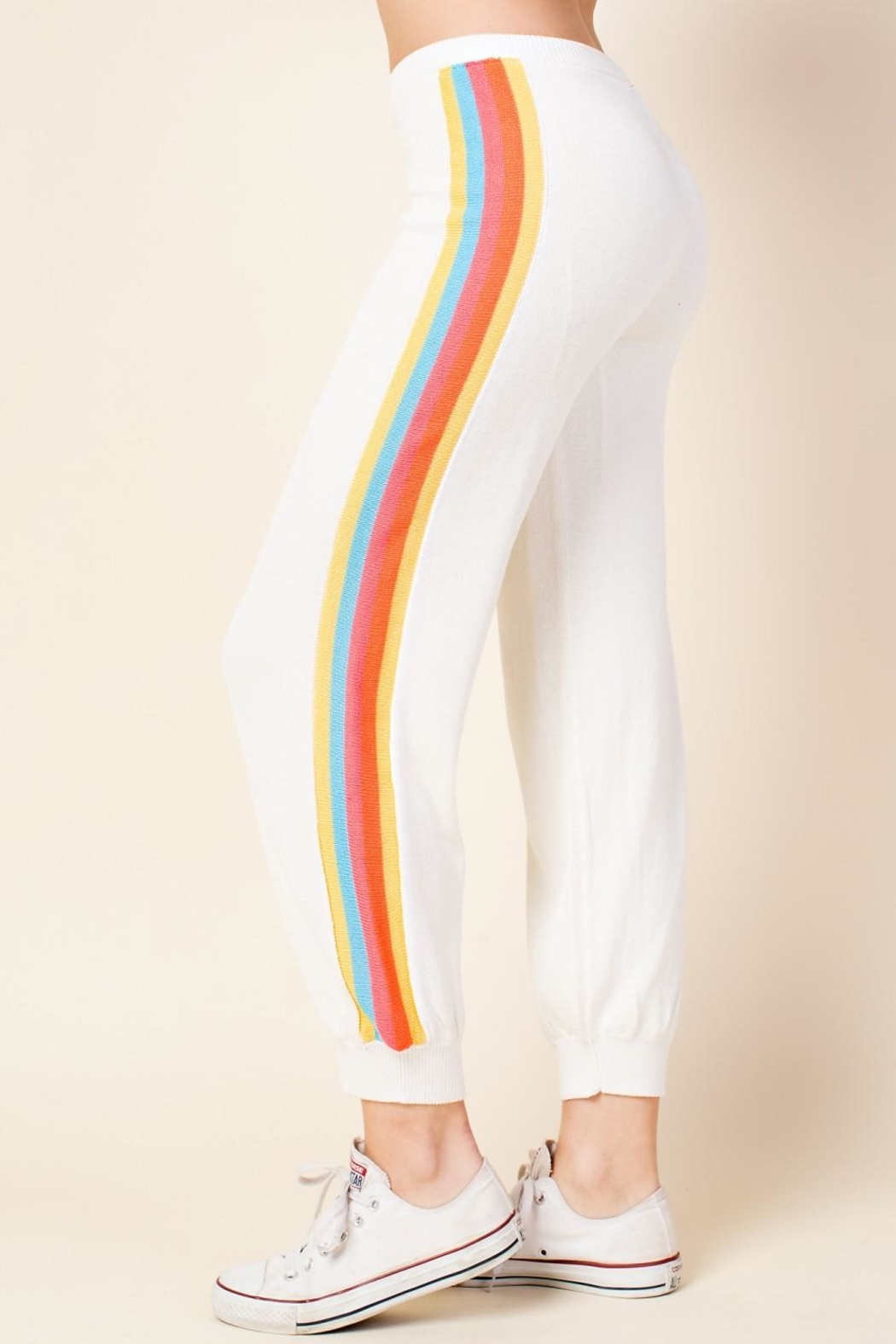 Honey Punch Stripe Track Pants - Front Cropped Image