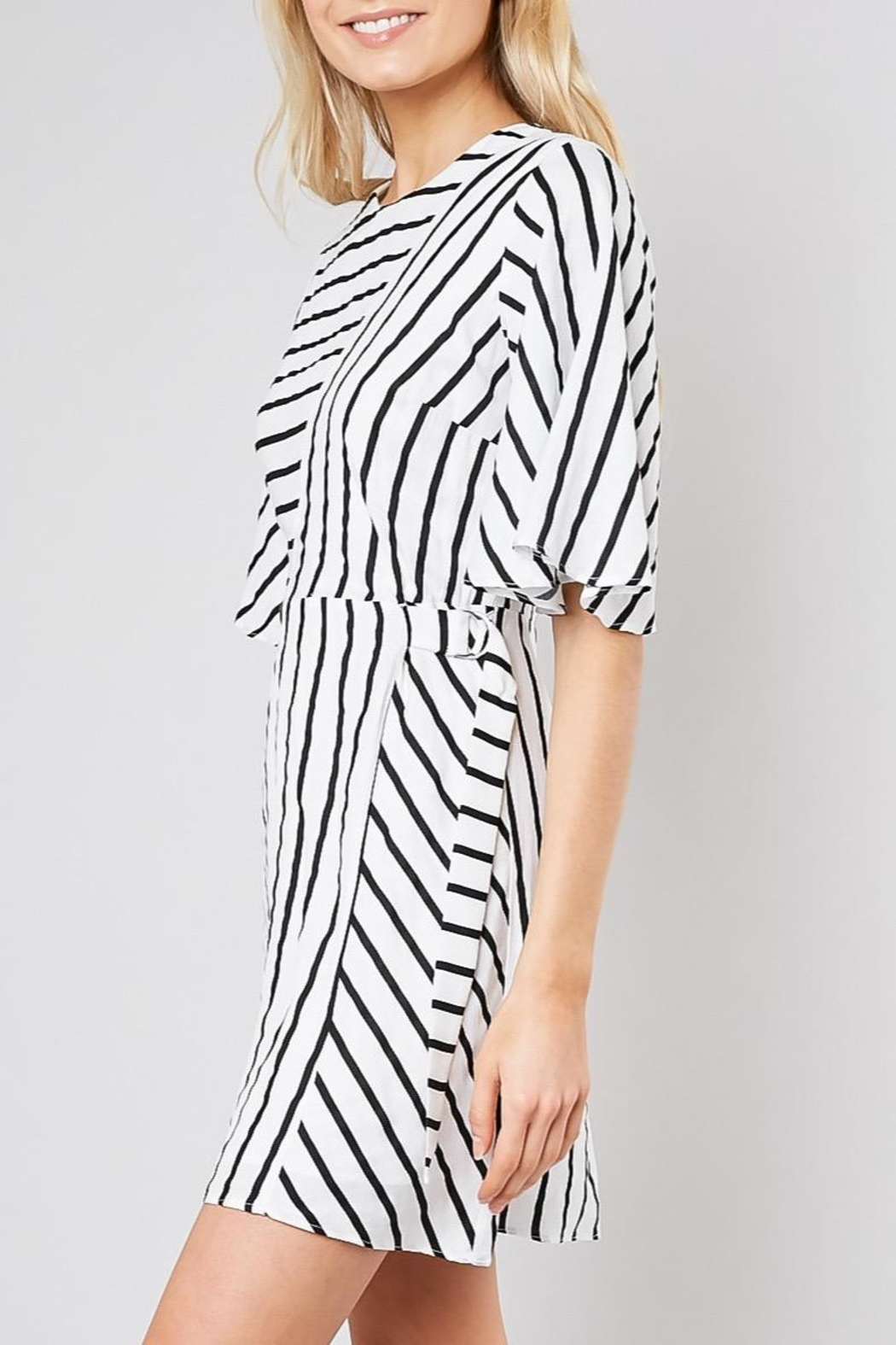 Do & Be Striped Belted Shift-Dress - Side Cropped Image
