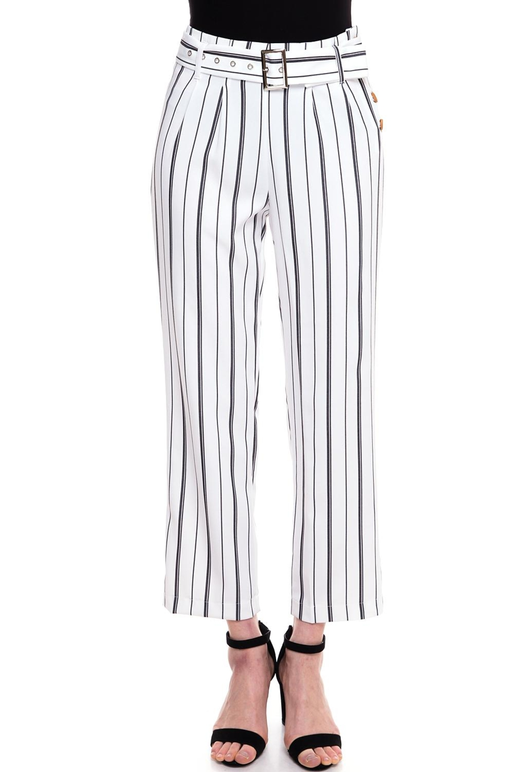 The Clothing Co Striped Buttoned Pants - Front Cropped Image
