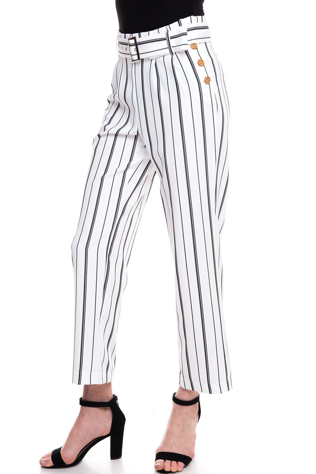 The Clothing Co Striped Buttoned Pants - Front Full Image