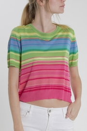 Thread+Onion Striped Crop Top - Front cropped