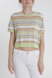 Thread+Onion Striped Crop Top - Product Mini Image