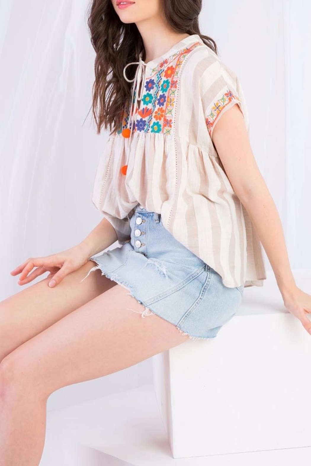 THML Clothing Striped Embroidered Top - Back Cropped Image