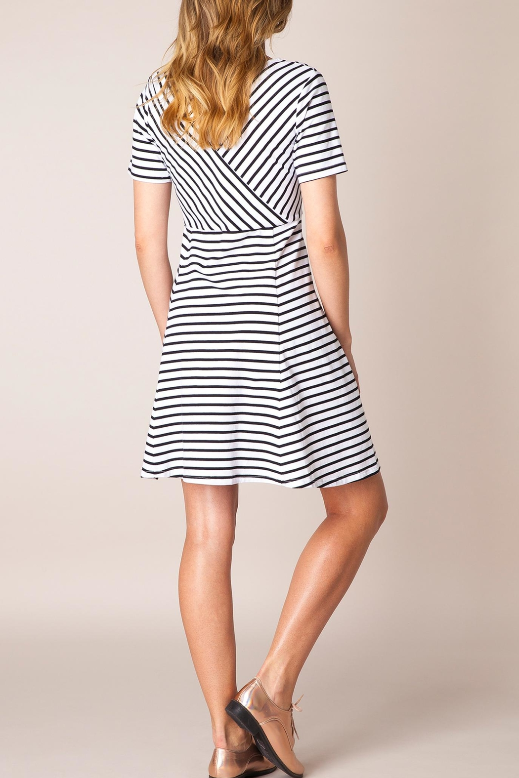 Ivy Beau Striped Flare Dress - Front Full Image