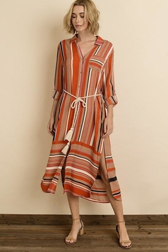 dress forum Striped Maxi - Product List Image