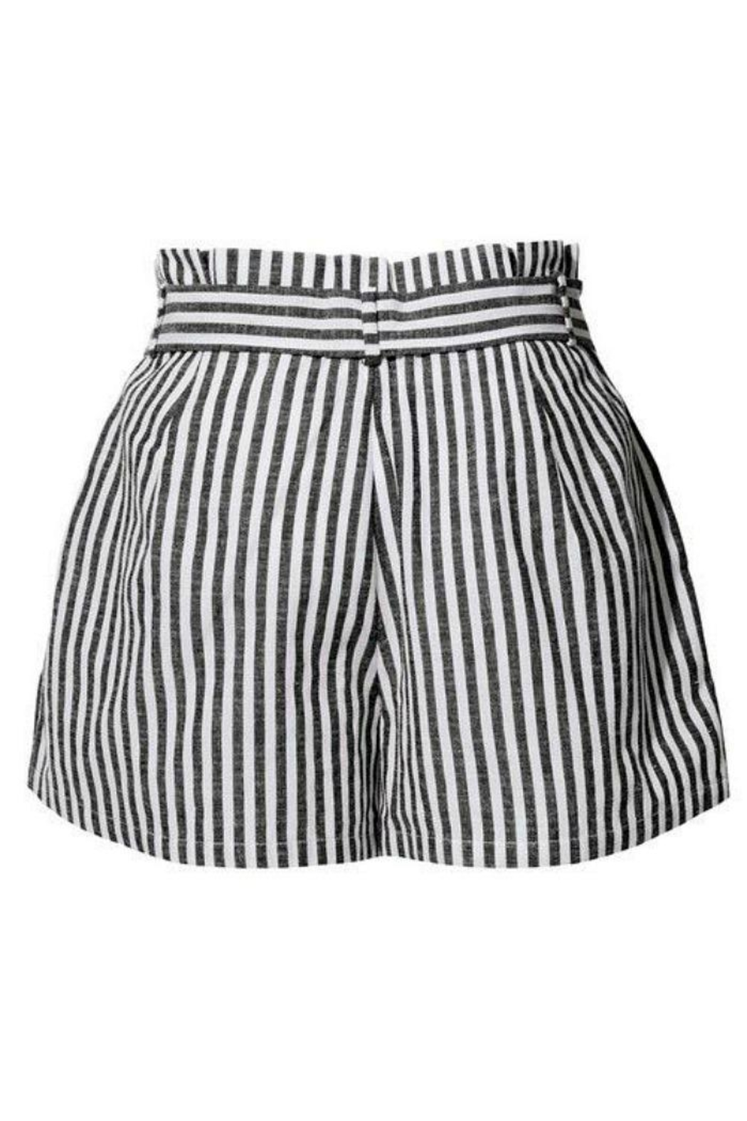2Sable Striped Paperbag-Waisted Shorts - Side Cropped Image