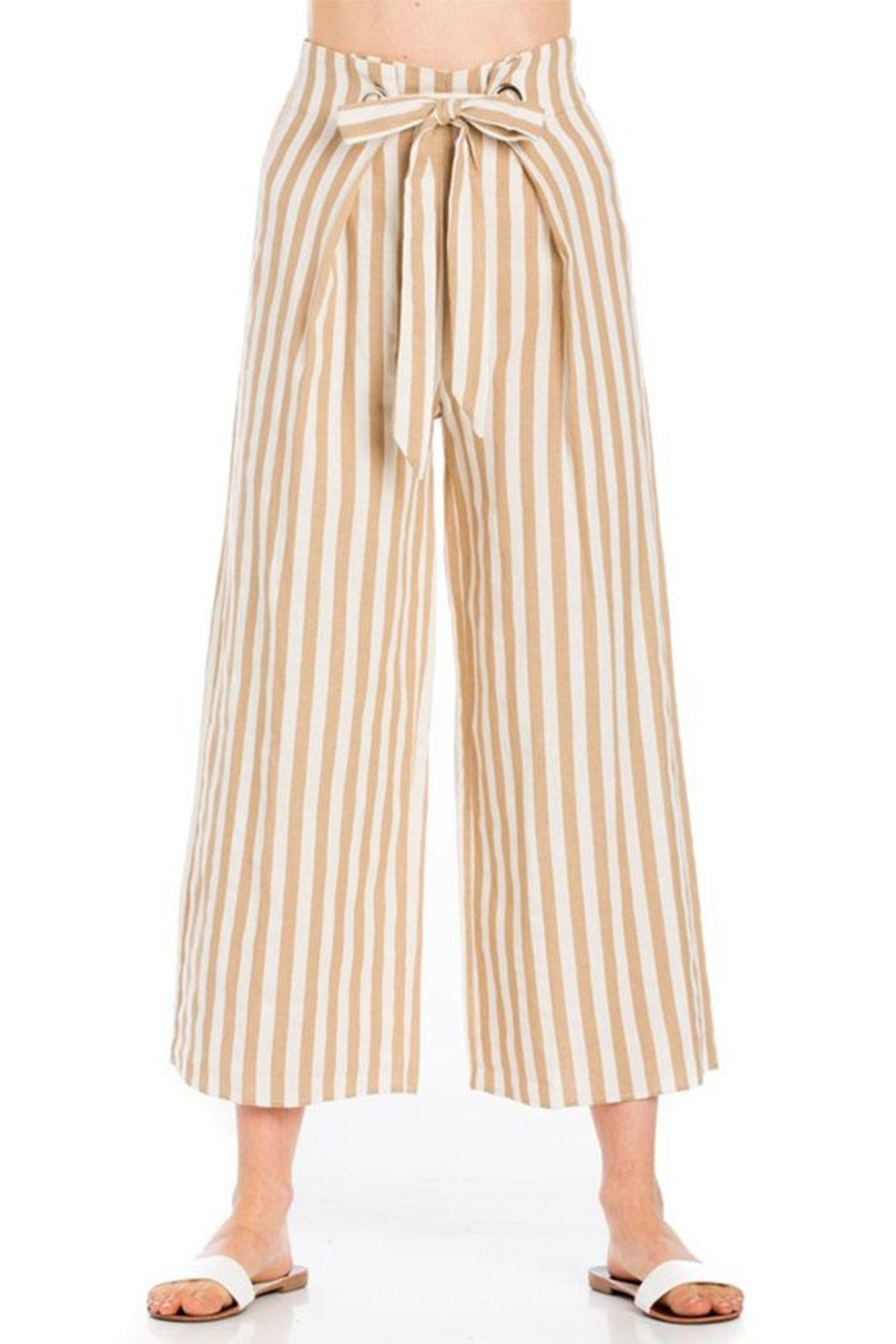 lunik Striped Tie Pants - Front Cropped Image