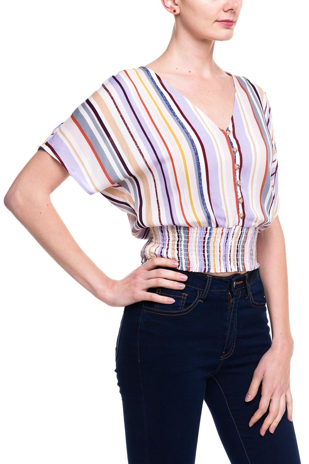Lumiere Stripped Buttoned Blouse - Front Full Image