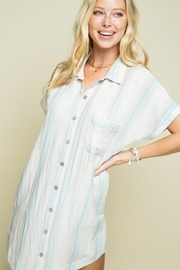 Style Rack Button Down Shirt Dress - Product Mini Image
