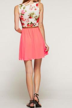 Style Rack Floral A-Line Dress - Alternate List Image