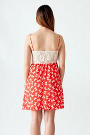 Stylebook Bow Print Dress - Back cropped
