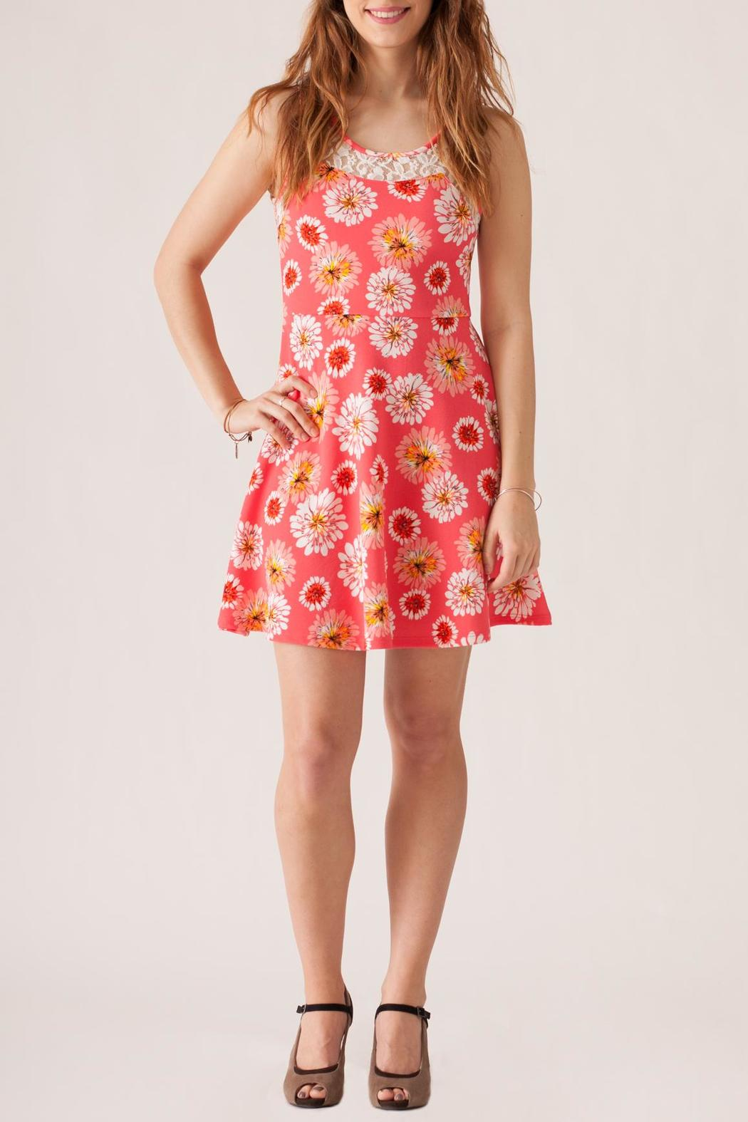 Stylebook Floral Print Dress - Front Cropped Image
