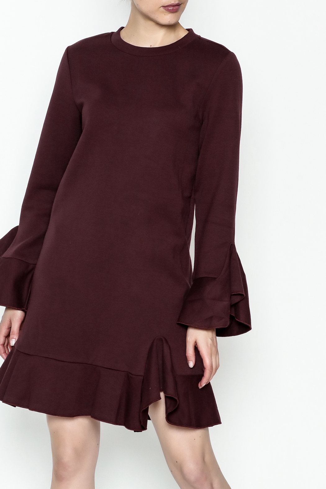 Sugar Lips Ruffle Sleeve Dress - Front Cropped Image