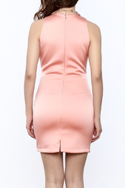 Sugar Lips Salmon Bodycon Dress - Back cropped