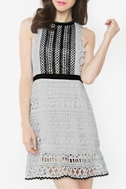 Sugar Lips Cassiar Lace Dress - Front cropped