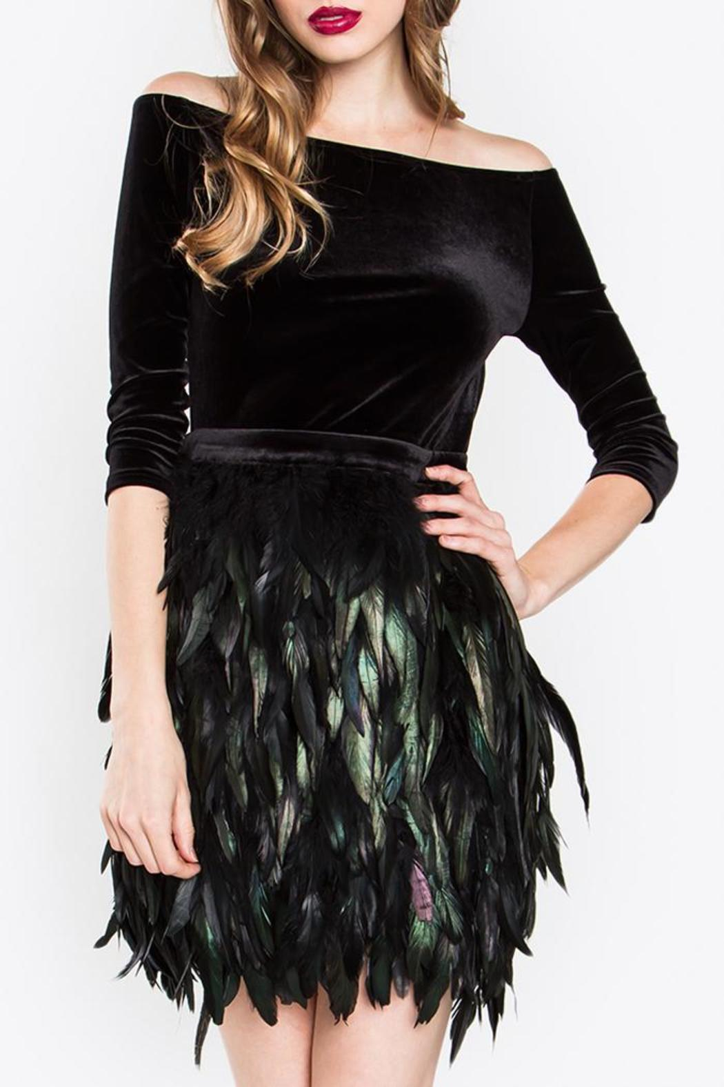 Sugar Lips Feather Dress From New York By Luna Shoptiques