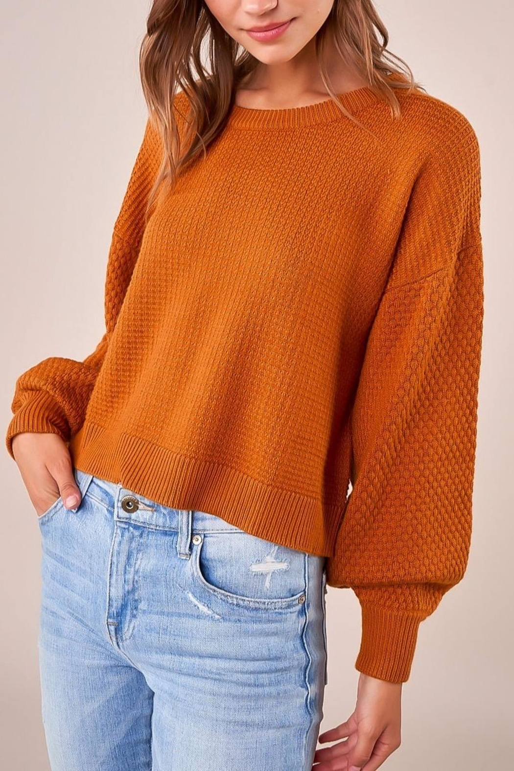 Sugarlips Balloon Sleeve Sweater - Side Cropped Image