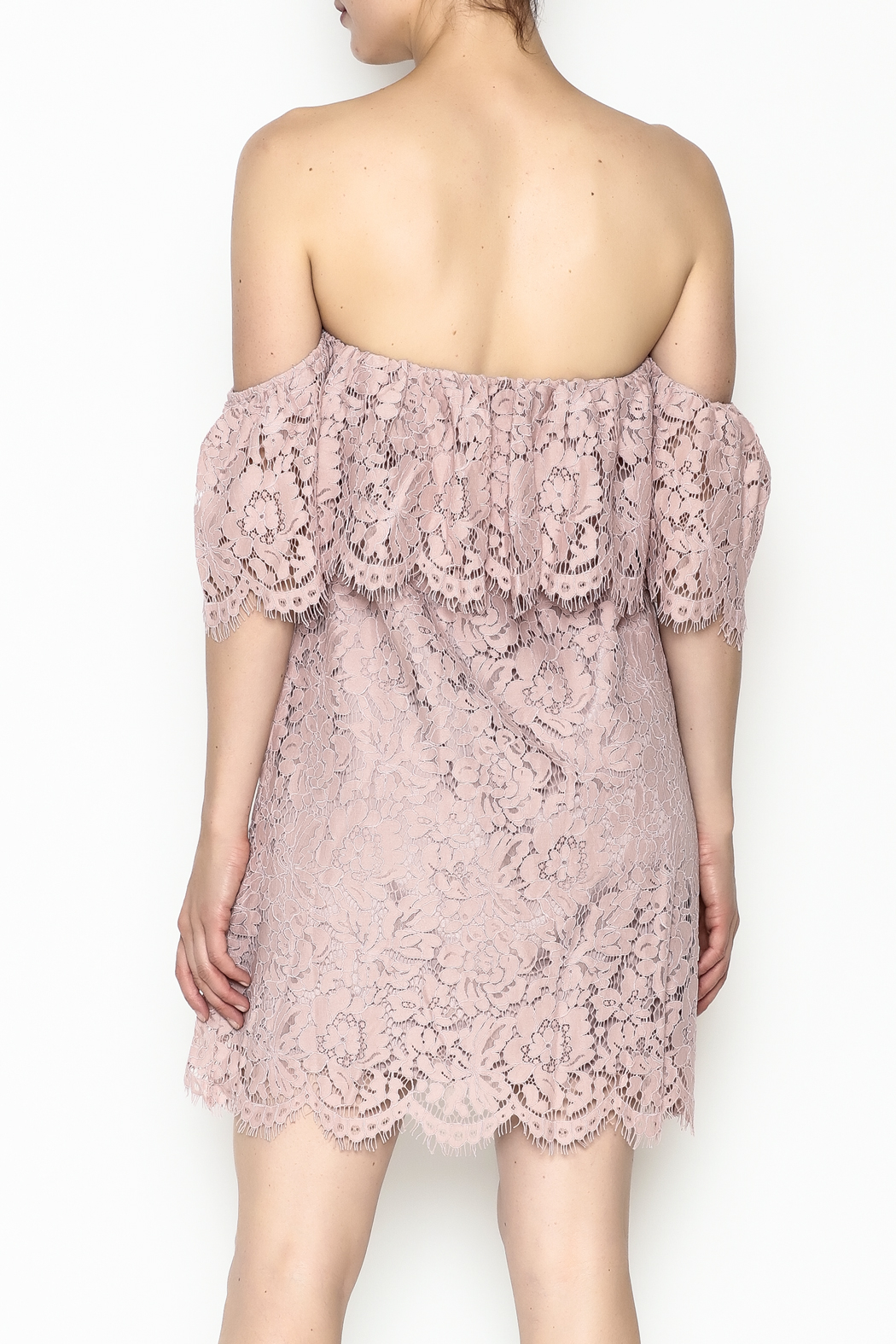 Sugarlips Hailey Lace Dress - Back Cropped Image