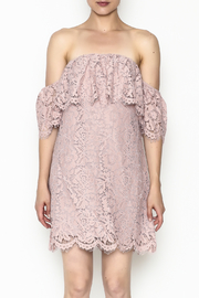 Sugarlips Hailey Lace Dress - Front full body