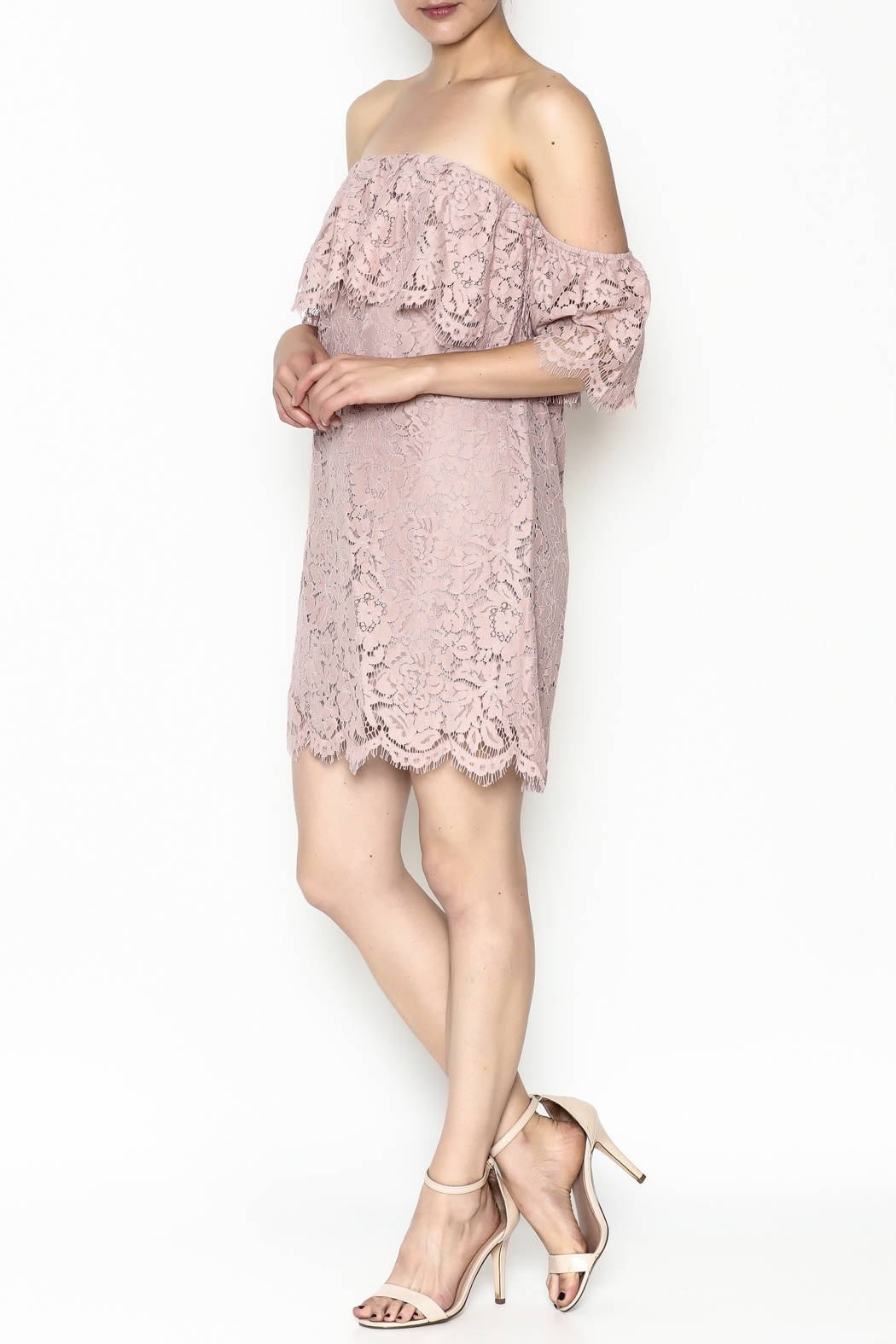 Sugarlips Hailey Lace Dress - Side Cropped Image