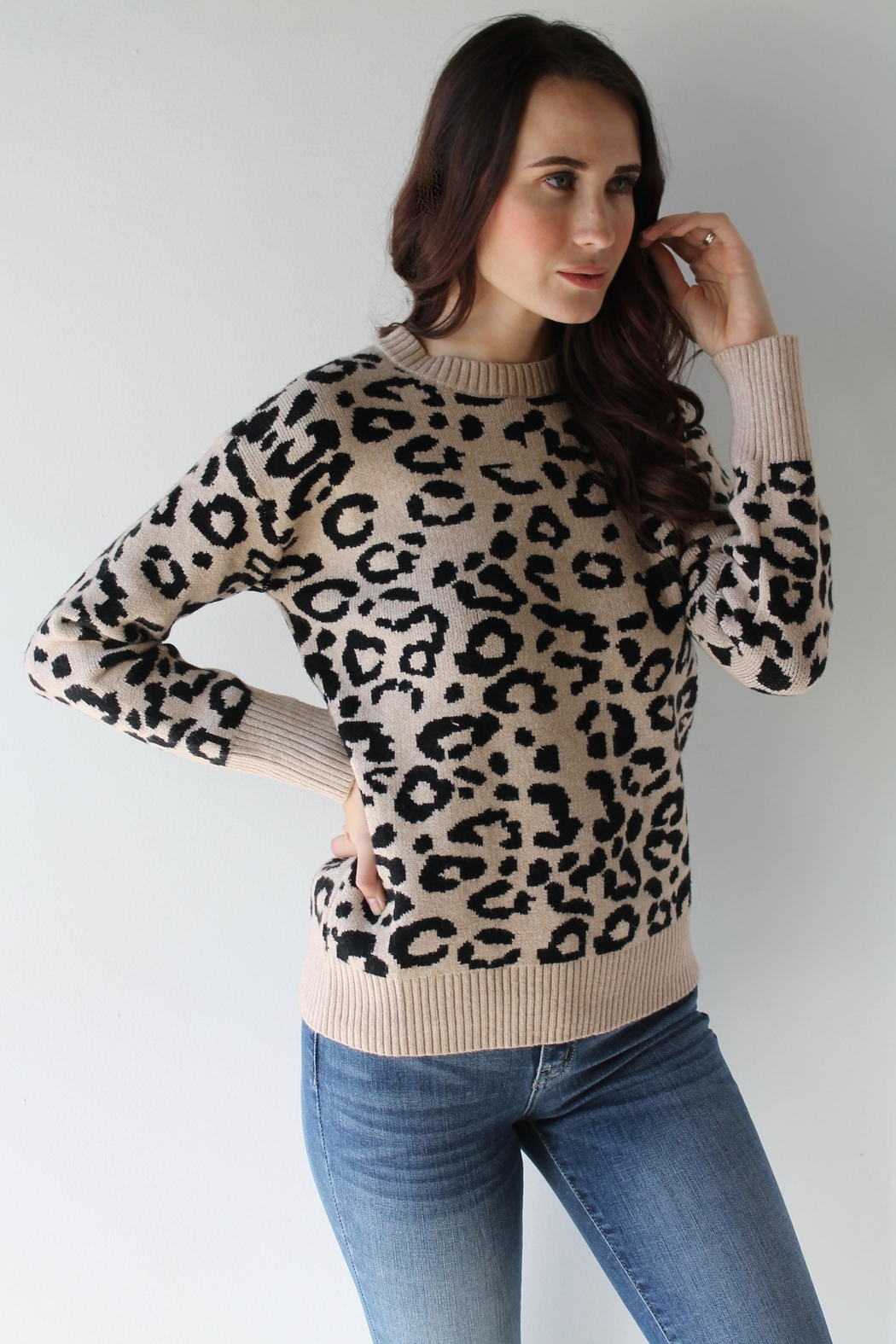 Sugarlips Willa Leopard Sweater - Front Full Image