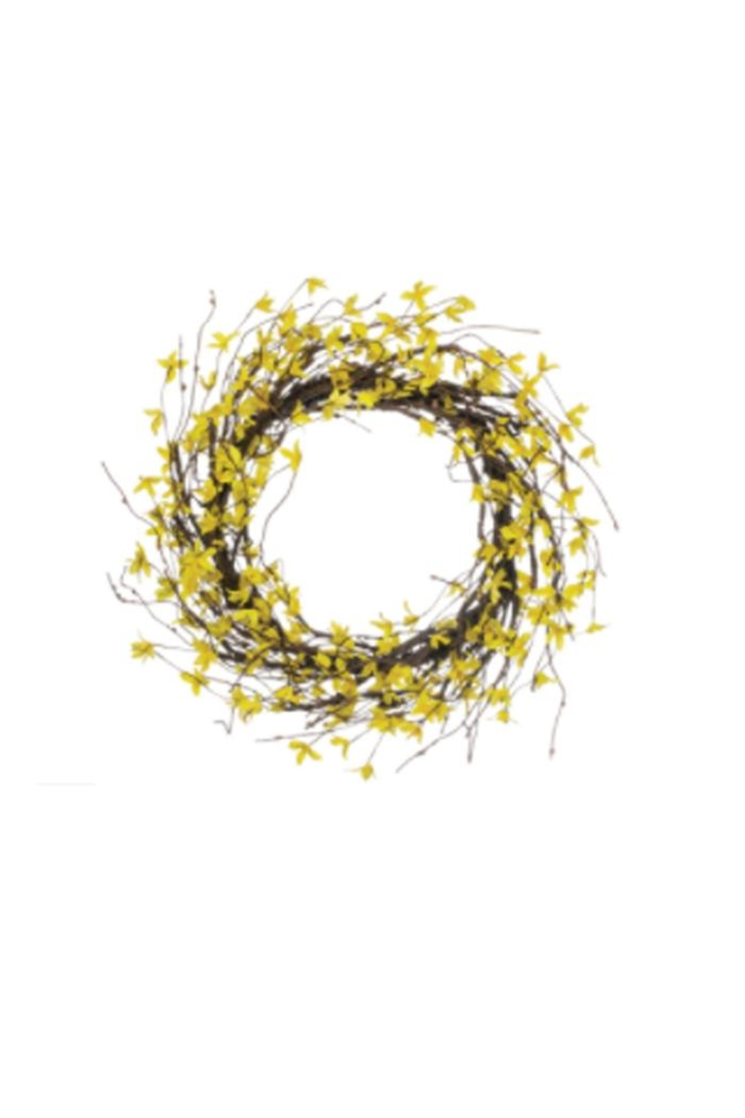 Sullivans Forsythia Wreath - Front Cropped Image