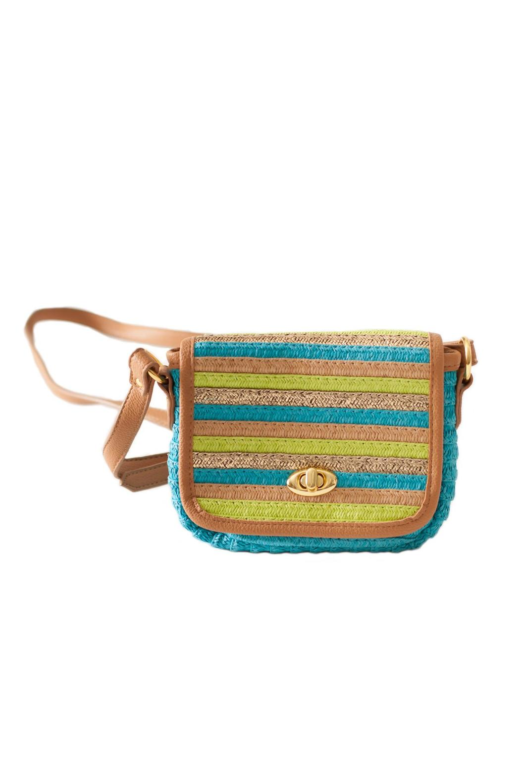 Sun n Sand Laguna Crossbody Bag - Front Cropped Image