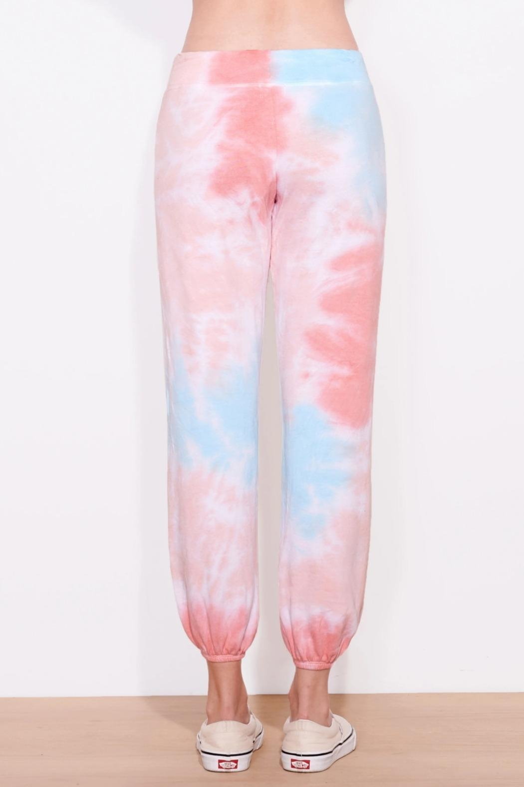 Sundry Multicolor Sweatpants - Side Cropped Image