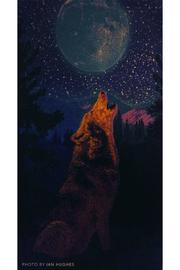 Sunshine Joy Glow In The Dark 3d Wolf Tapestry - Front full body