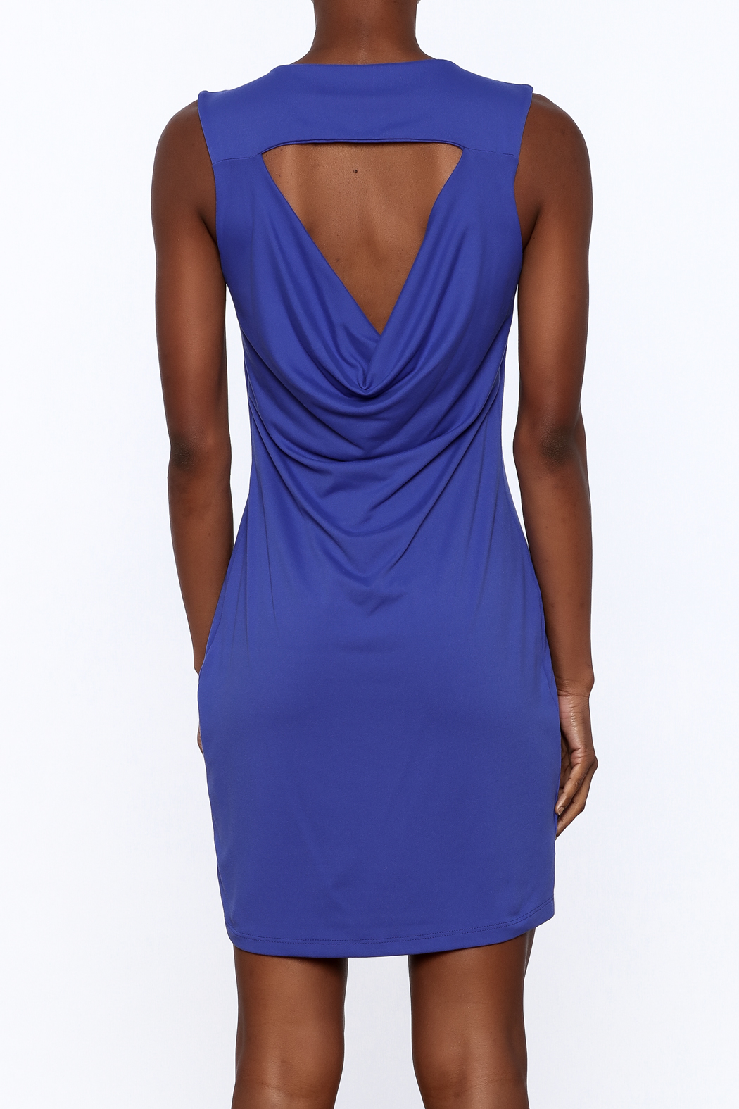Susana Monaco Aeliana Sheath Dress - Back Cropped Image