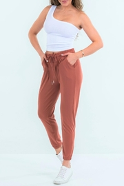 Suzette Collection Ultra-Soft Clay Joggers - Product Mini Image