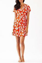 Pink Martini Collection Sweet Attitude Dress - Front full body