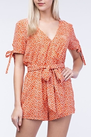 Honey Punch Sweet Dandelion Romper - Front full body