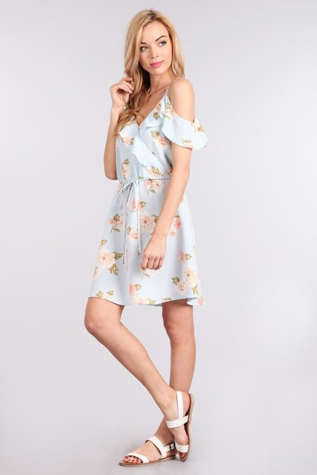 Sweet Wanderer Baby-Blue Floral Dress - Front Full Image