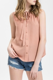 Sweet Wanderer by Blue Pepper Blush Tie Neck Top - Product Mini Image