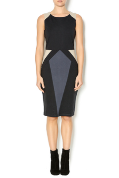 Shoptiques Product: Raven Dress
