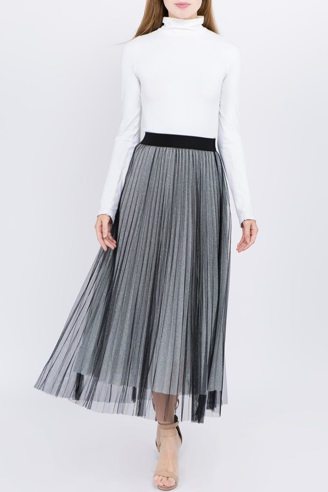 Tabac Tulle Pleated Skirt - Front Cropped Image