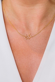 Tai Sagittarius Zodiac Necklace - Front cropped