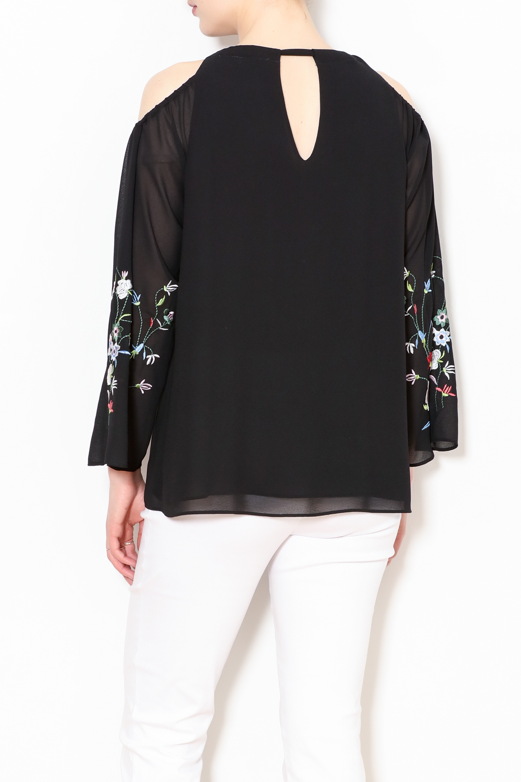 Talk of the Walk Embroidered Sleeve Blouse - Back Cropped Image