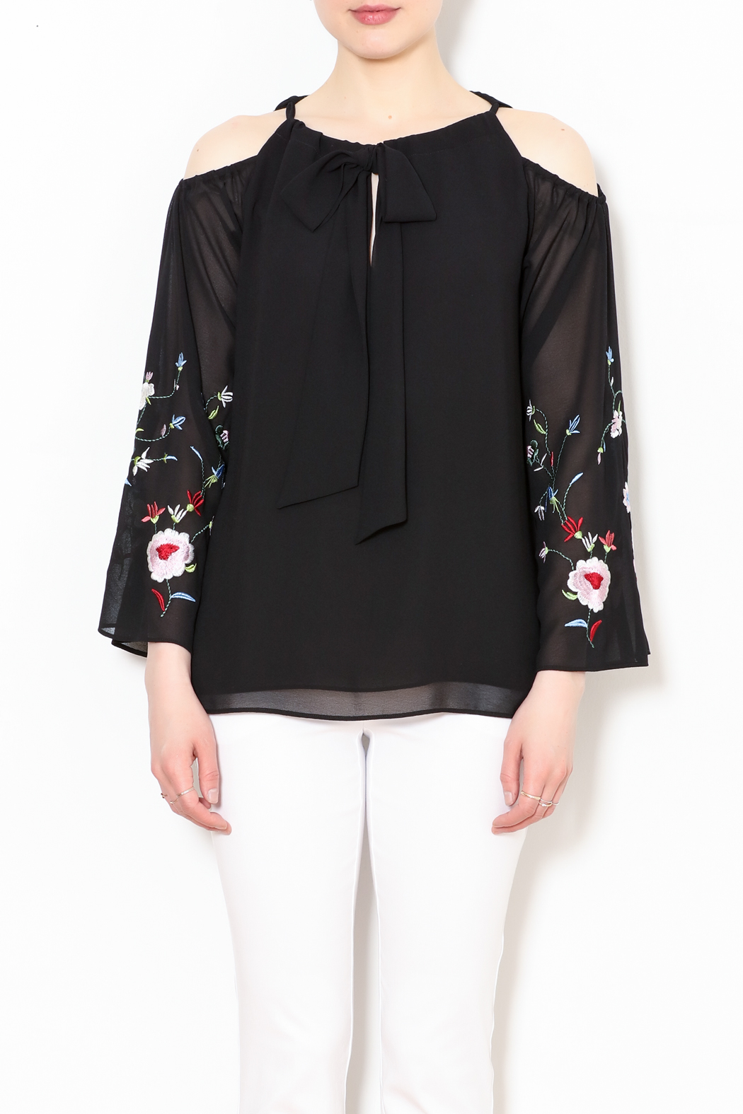 Talk of the Walk Embroidered Sleeve Blouse - Front Full Image