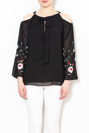 Talk of the Walk Embroidered Sleeve Blouse - Front full body