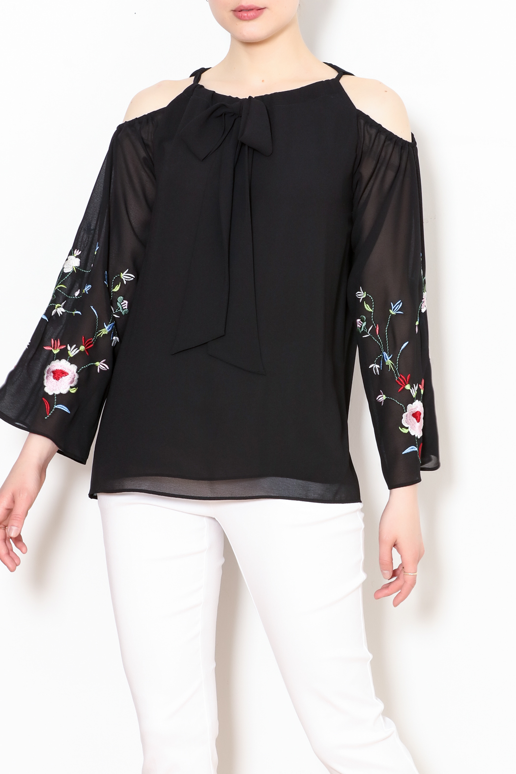 Talk of the Walk Embroidered Sleeve Blouse - Main Image