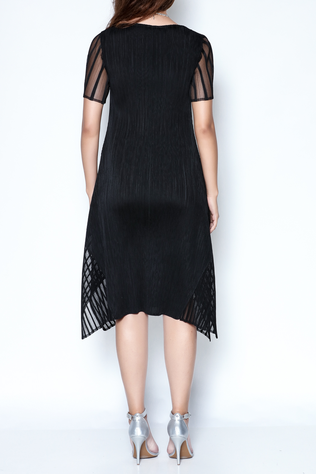 Talk of the Walk Pleated Illusion Dress - Back Cropped Image