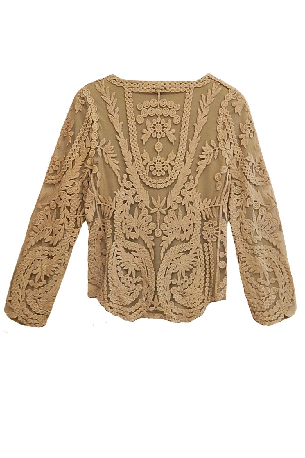 AZI Tan Lace Top - Front Full Image