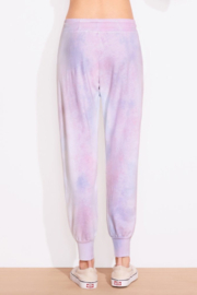 Sundry Tie Dye Tapered Sweatpant - Front full body
