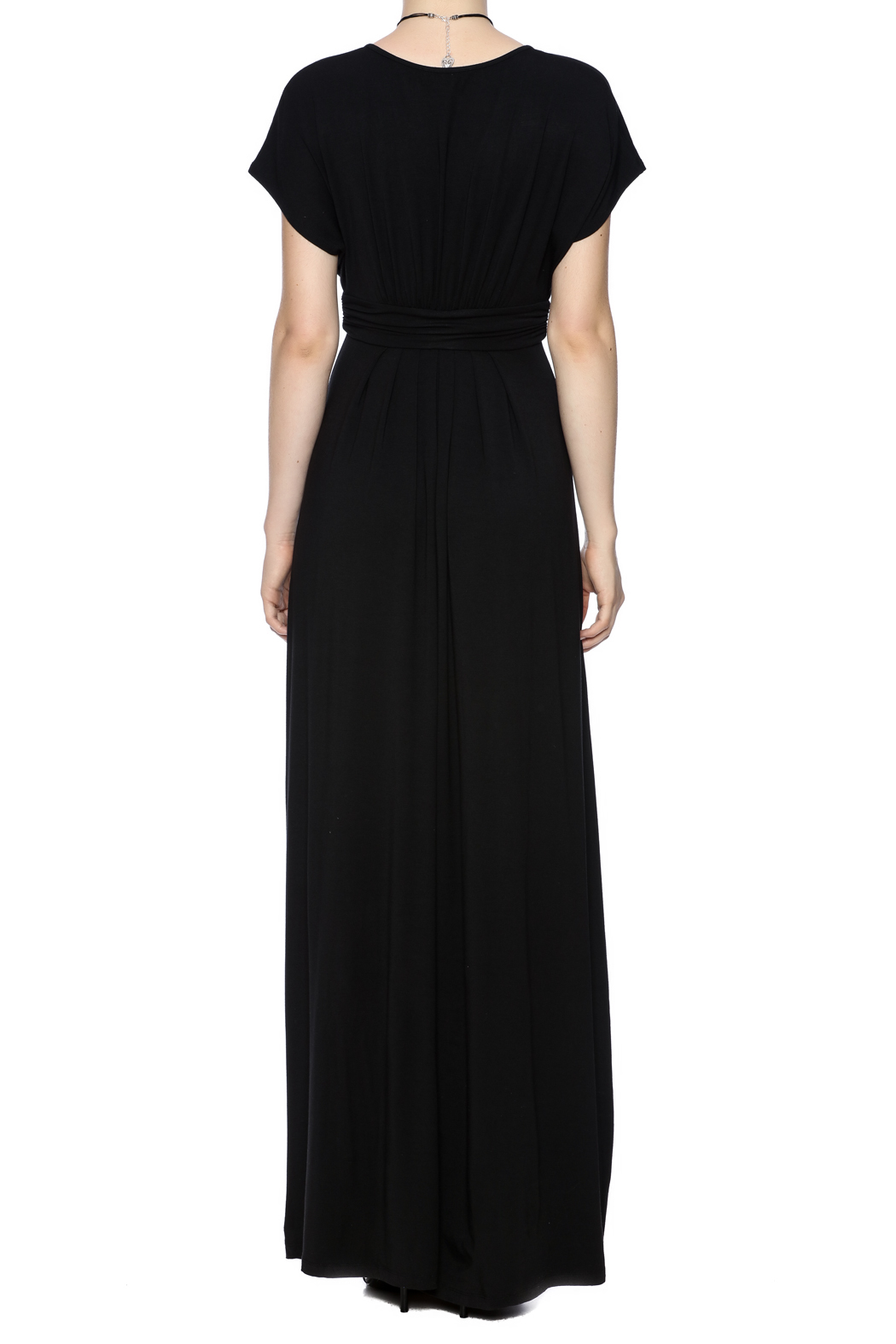 Tart Collections Empire Maxi Dress - Back Cropped Image